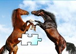 Chevaux flash puzzle - Horse racing jigsaw puzzles